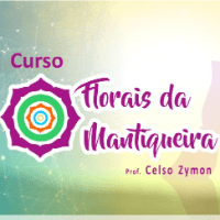 Imagem do produto Curso Florais da Mantiqueira
