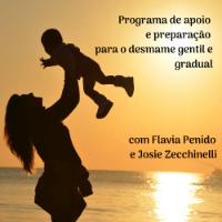 Imagem do produto Desmame Gentil - Programa de Apoio e Preparação para Mães e família