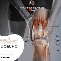 Imagem do produto Curso de avaliação e reabilitação do Joelho