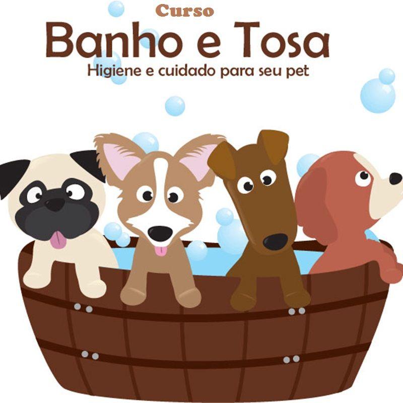 Imagem do produto curso de banho e tosa com veterinário disponível 24 horas